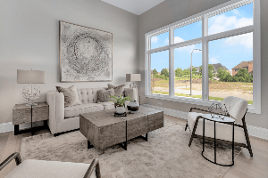 Chicagoland Home Staging Selling A Home Busy Street Naperville